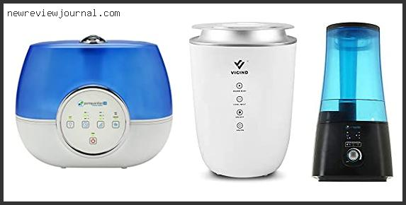 Best Humidifier Cool Or Warm Mist