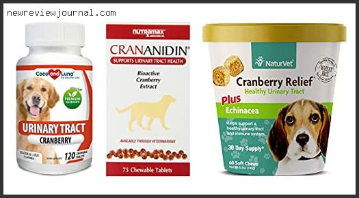 Deals For Best Cranberry Supplement For Dogs – Available On Market