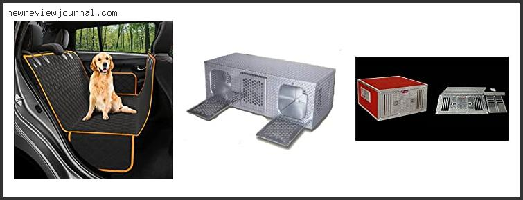 Best Dog Box For Truck