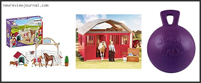 Best Horse Stall Toys