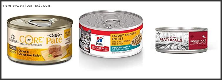Best Canned Cat Food For Indoor Cats