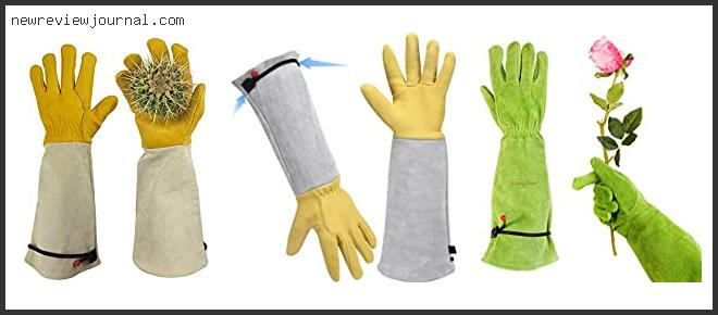 Best Gloves For Cactus