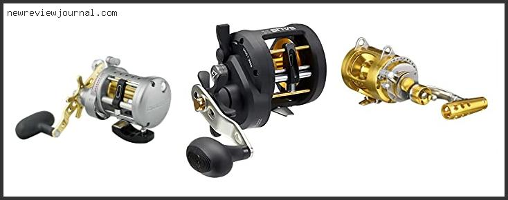 Best Conventional Reel For Bottom Fishing