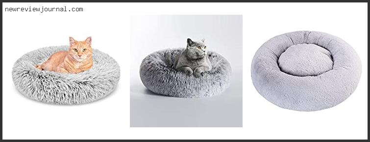 Cat Beds For Large Cats