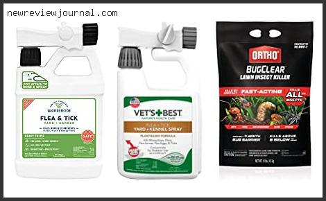 Flea And Tick For Yard