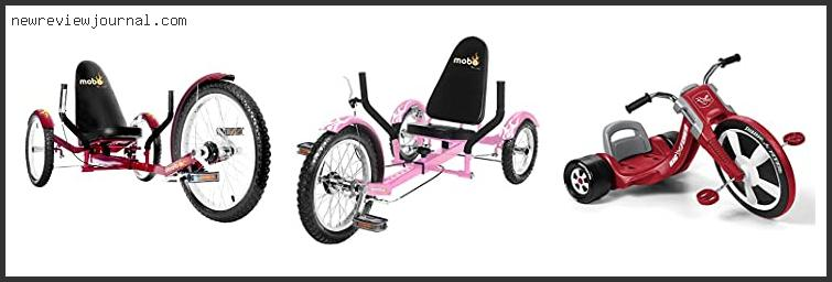 Best #10 – Big Wheel Tricycles For Adults Based On User Rating