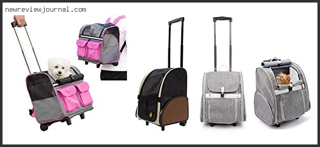 Rolling Pet Carrier Airline Approved
