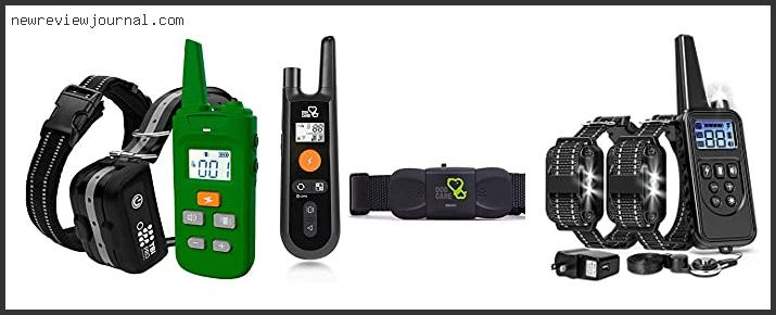 Top #10 Pros And Cons Of Shock Collars Based On User Rating