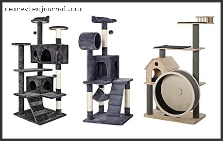 Buying Guide For Best Cat Tree For Declawed Cats Reviews For You