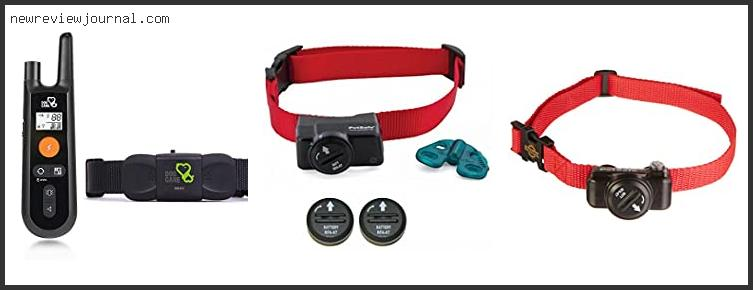 Best Deals For Petsafe Shock Collar For Small Dogs Reviews With Products List